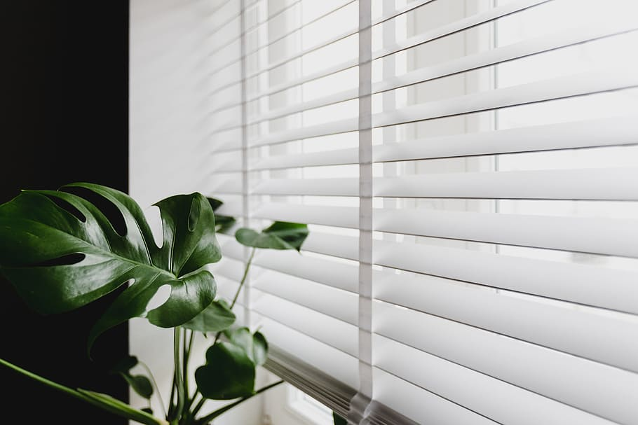 Why Cordless Blinds in Orange Are a Must (and Not for Child Safety)