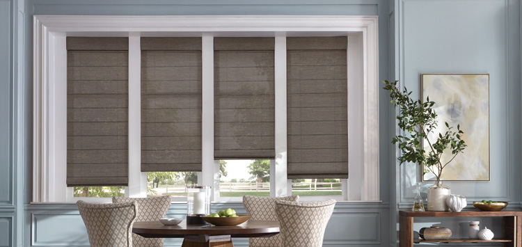 Reasons Blinds & Shades In Santa Ana Are Two Of The Most Popular Types Of Window Coverings
