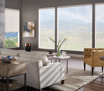 Wood Blinds by Budget Blinds
