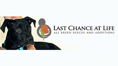 last-chance-at-life-rescue