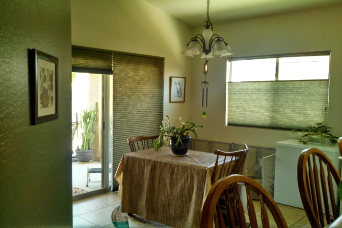 Why Honeycomb Shades in Nampa Are the Most Cost-Effective Window Treatment
