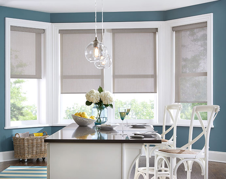 Roller Shades In Boise Are Popular For Many Different Reasons