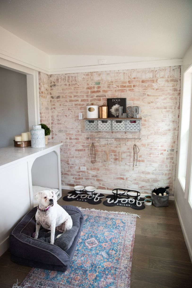 Easy-Clean Rugs for Pets
