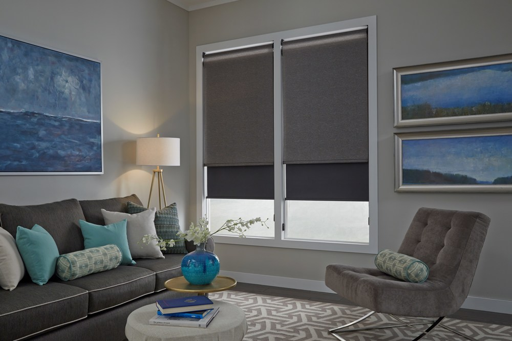 Dual Roller Shades in Living Room