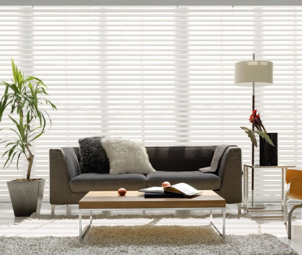 Fabric Blinds in Living Room