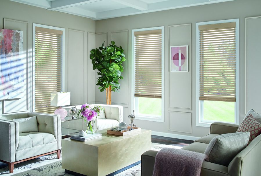Wood Blinds in Living Room