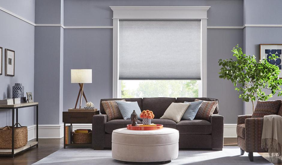 Light Blue Cellular Shades Living Room Gh