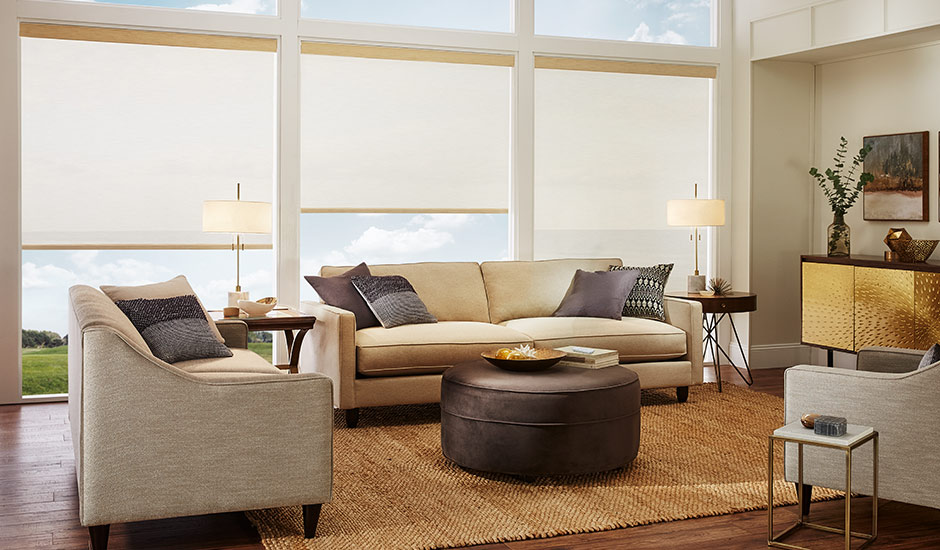 tan-roller-shades-grass-modern-home